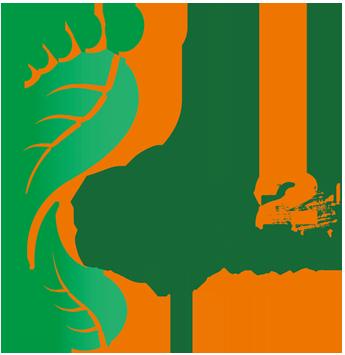 race-2-adventure-ireland